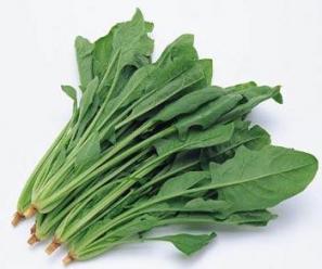 Rau cải bó xôi là nguồn cung cấp Vitamin B2 dồi dào